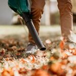 Soffiatore di foglie
